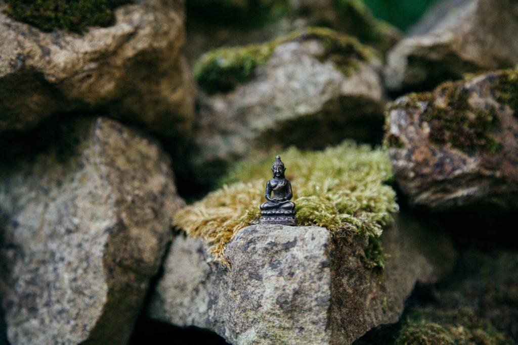 Role of meditation