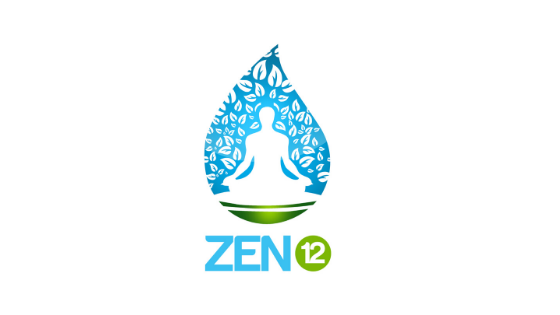 Zen12 Review: Hacking The Mind Through Meditation