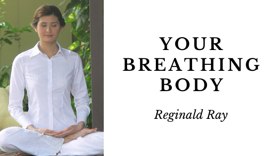 Your Breathing Body By Reginald Ray (Review)