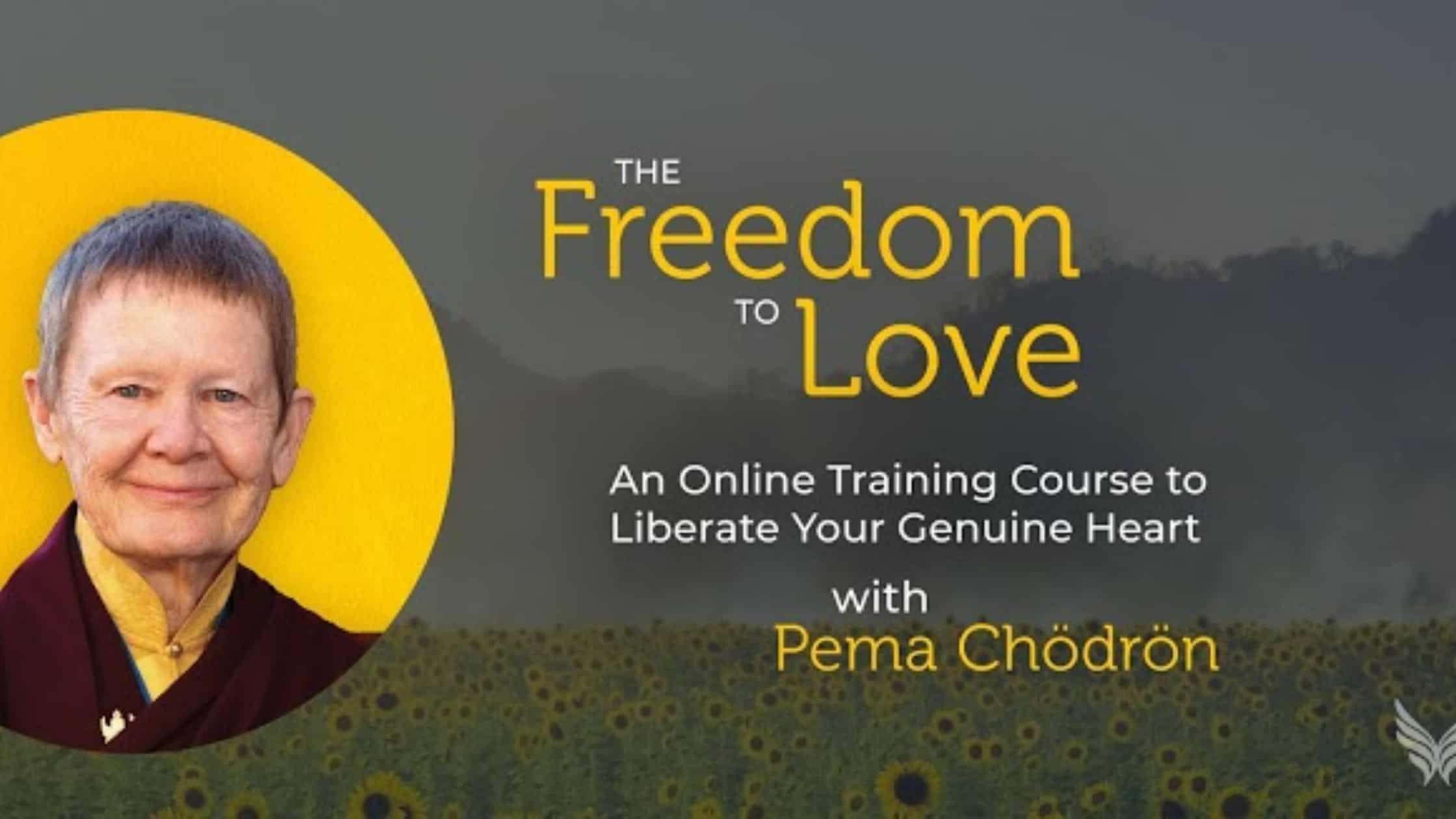 Pema Chodron Online Course – The Freedom To Love