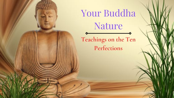 Read more about the article What Is The Buddha Nature (SECRET: You Have This)